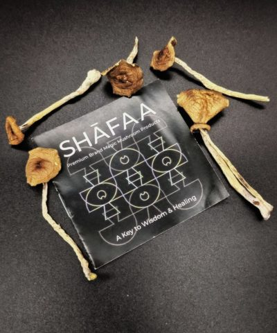 Costarican Magic Mushrooms