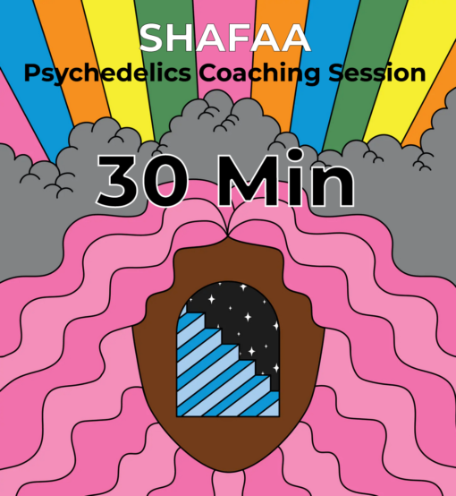 Psychedelic Mushrooms Coaching Session - 30 Min